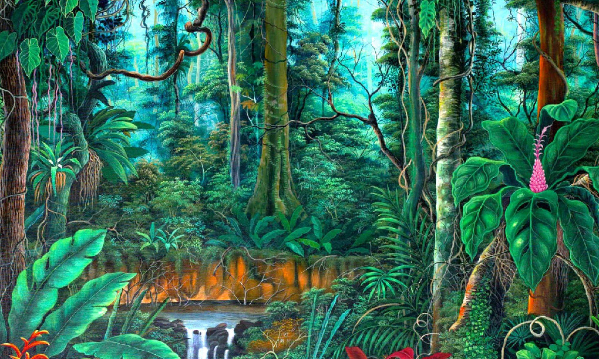 Rainforest Medicine Gatherings